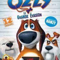 Ozzy, la Grande évasion - Pau